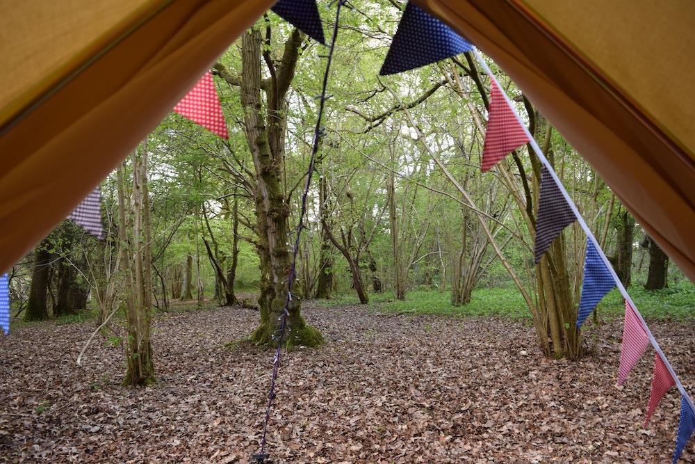 Shot of woodland through cream bell tent door