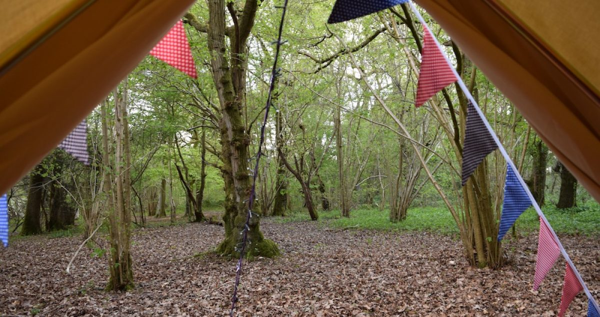 Shot of woodland through cream bell tent door