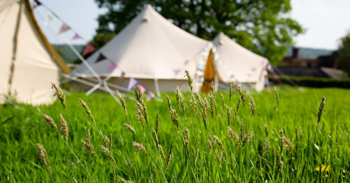 Exterior of bell tents looking through green grass